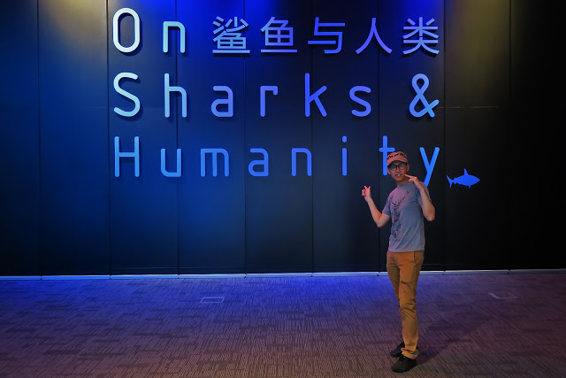 On Sharks and Humanity (9 Mar 2016 - 26 Jun 2017)